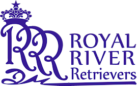 Royal River Retrievers