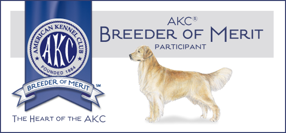 Royal River Retrievers Breeder of Merit